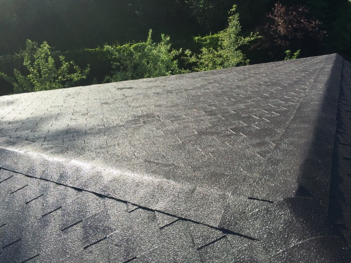 Tile (bitumen) roof of a private house [11]